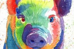 34ff51eaa7af_wwm-pig