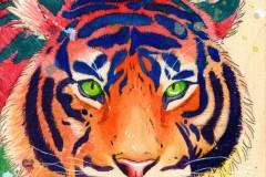 3794e4aed9e0_tiger-web