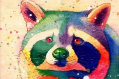 680c477742a9_raccoon-web