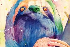 sloth-web